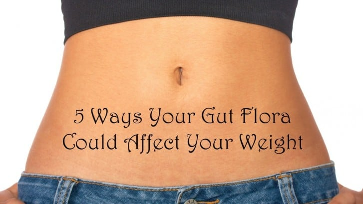 Daily Body Restore 5 ways your gut flora could affect your weight