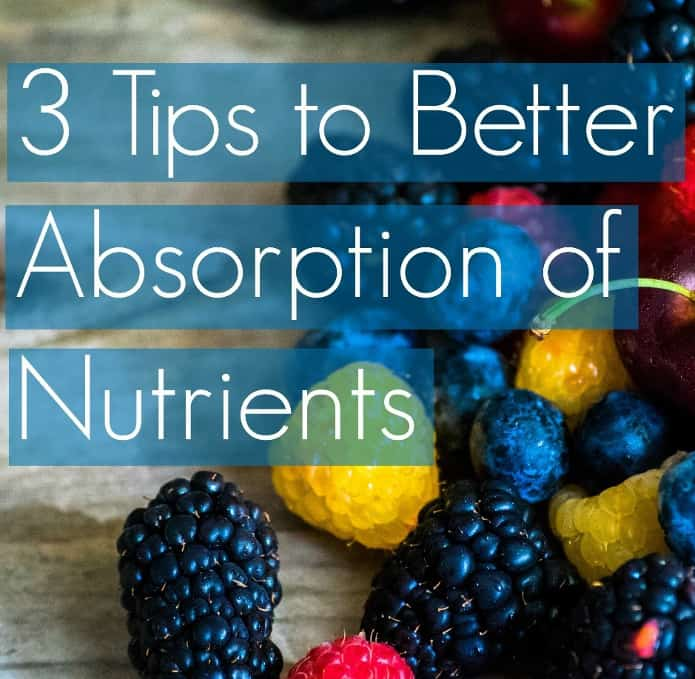 Daily Body Restore Probiotics 3 tips to better absorption of nuttrients